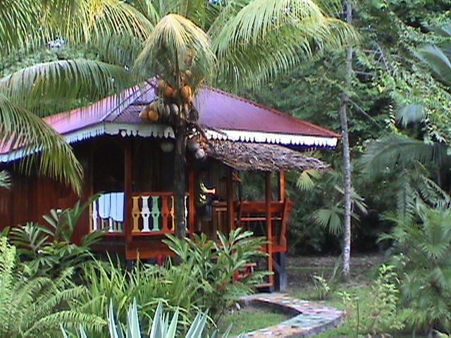 Una cabaña preciosa en el hotel Costa de Papito, Puerto Viejo