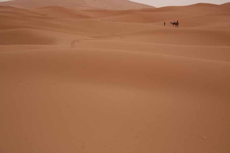 Adentrándonos en desierto