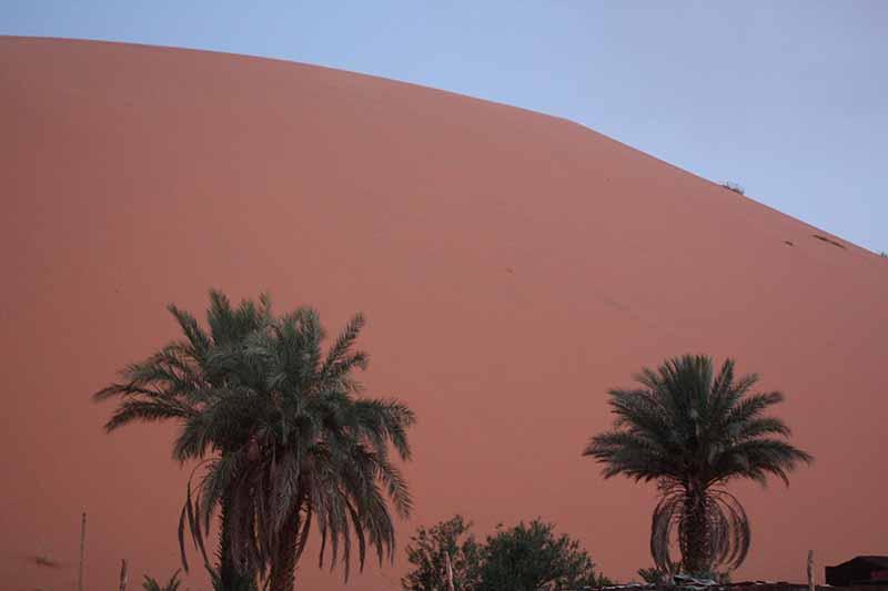Amanecer en las dunas