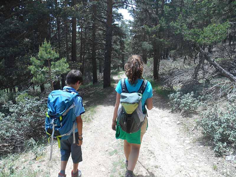Sierra Alta (Bronchales)